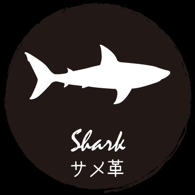 サメ革,シャークスキン,皮革,素材,説明